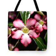 Desert Rose X4 Tote Bag