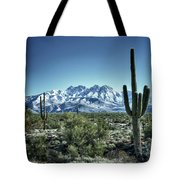 Desert Snow Tote Bag