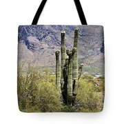 Desert Strength Tote Bag