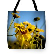 Desert Sunflower Variations Tote Bag