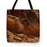 Desert Varnish Petroglyphs Valley Of Fire Tote Bag