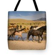 Desert Water Tote Bag