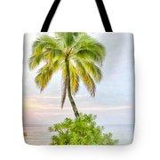 Deserted Beach Tioman Tote Bag