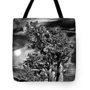 Deserted Tree Tote Bag