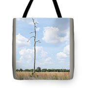 Desolate Tree Tote Bag
