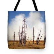Desolation Tote Bag