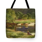 Detail Of A Highland Loch Scene Tote Bag