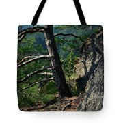 Detail Of A Pine On The Edge Of A Rock Tote Bag