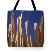 Detail Of Bristlecone Pine Tote Bag