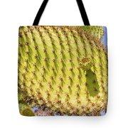 Detail Of Cactus In Galapagos Tote Bag