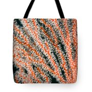 Detail Of Sea Fan, Or Gorgonian Coral Tote Bag