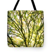 Detailed Tree Branches 1 Tote Bag