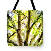 Detailed Tree Branches 2 Tote Bag
