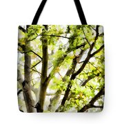 Detailed Tree Branches 3 Tote Bag