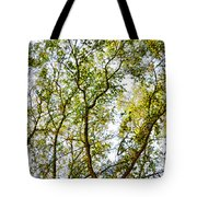 Detailed Tree Branches 5 Tote Bag