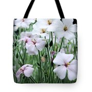 Details In Soft White Tote Bag