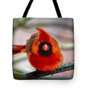Determined Cardinal  Tote Bag