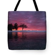 Detroit Point Sunset Off The Ice Tote Bag
