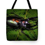 Devil Horned Rhino Beetle Tote Bag