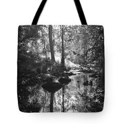 Devil Water In Sunlight Tote Bag