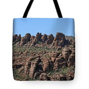 Devils Canyon Arizona Tote Bag