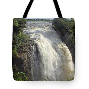 Devil's Cataract Tote Bag