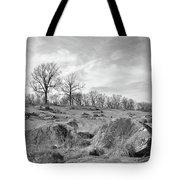 Devil's Den Tote Bag