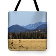 Devil's Head Fire Tower In The Pike National Forest Tote Bag