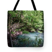 Devil's Millhopper Gainesville Fl II Tote Bag