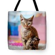 Devon Rex Purebred Domestic Cat Tote Bag