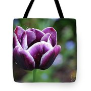 Dew Clinging To The Petals Of  A Tulip Blossom Tote Bag