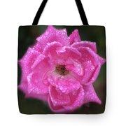 Dew Covered Rose Tote Bag