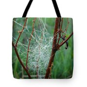 Dew Covered Spider Web Tote Bag