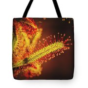 Dew Covered Tentacles Tote Bag