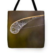 Dew Drop In Tote Bag by Carolyn Marshall