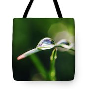 Dew Drop On Spring Grass Tote Bag