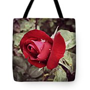 Dew Drop Rose Tote Bag