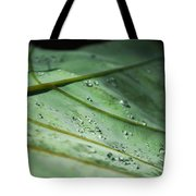 Dew Droplets Of Nature Tote Bag