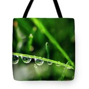 Dew Drops On Blade Of Grass Tote Bag