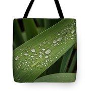 Dew Drops On Leaf Tote Bag