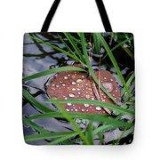Dew It At The Creek Tote Bag