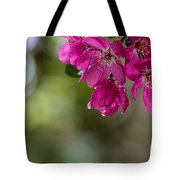 Dew On Blossoms Tote Bag