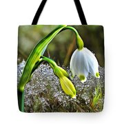 Dew On Lilly Of The Valley Tote Bag
