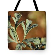 Dew On Rue Tote Bag