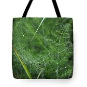 Dew On The Ferns Tote Bag