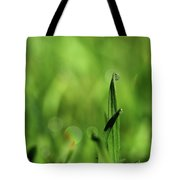 Dew On The Grass Tote Bag