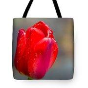 Dew On Tulip Tote Bag