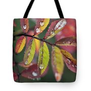 Dew On Wild Rose Leaves In Fall Tote Bag
