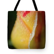 Dew On Yellow Rose Nature Photograph Tote Bag