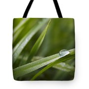 Dewy Drop On The Grass Tote Bag